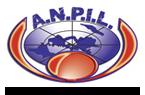 logo_anpil3